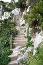 250px-Gibraltar_nature_trail