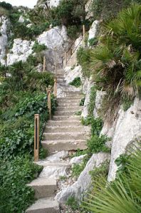 250px-Gibraltar_nature_trail