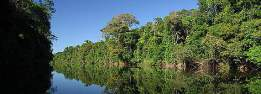 AMAZON REGION 3 KOLOMBIA